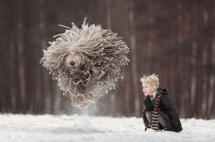 Małe dzieci i ich duże psy to przepiękne połączenie.