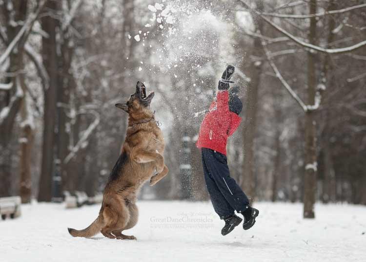 Sesja zdjęciowa zimą